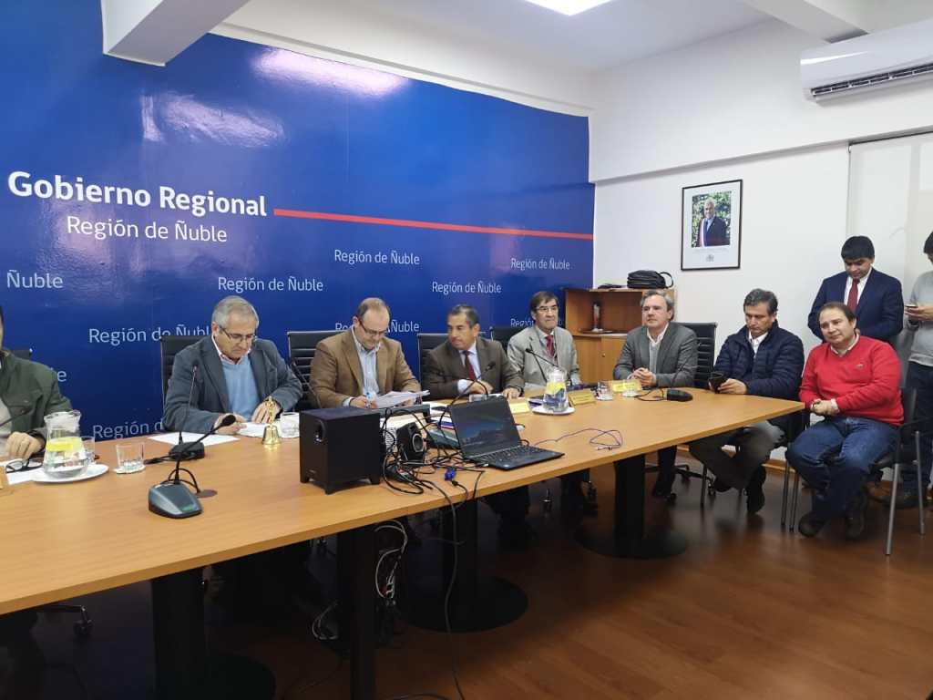 ÑUBLE CONTARÁ CON 18 NUEVOS PUENTES GRACIAS A VOTACIÓN FAVORABLE DEL CONSEJO REGIONAL.