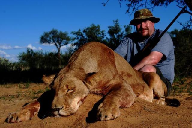Oferta 2X1 en muertes: Reserva una cacería de león y asesina a una leona sin coste adicional