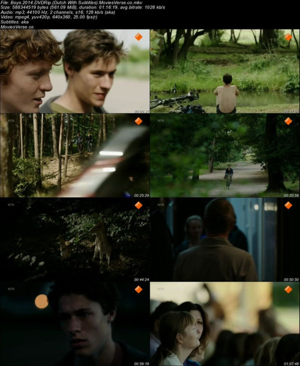 Boys-2014-DVDRip-Dutch-With-Subtitles-Movies-Verse-co