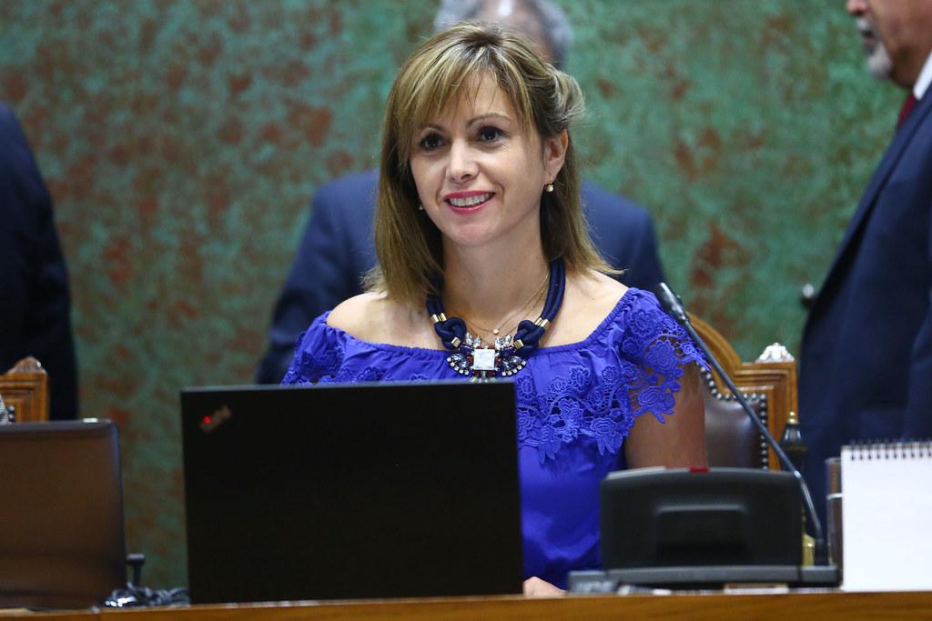 Informe ONU: Diputada carvajal destaca la necesidad de una real protección a los DDHH y que Nueva Constitución garantice paridad de género