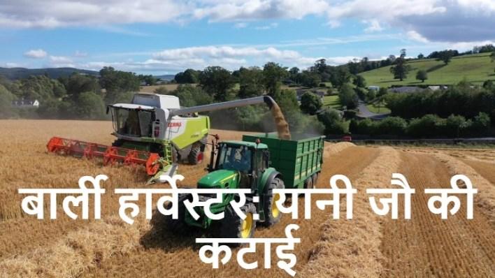 Benefits And Meaning of Barley in Hindi - लाभ और हिंदी में जौ का अर्थ