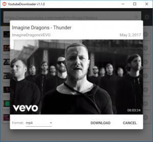 YoutubeDownloader náhled pro download
