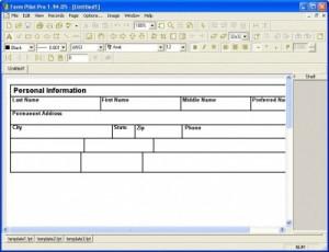 Form Pilot Pro náhled pro download