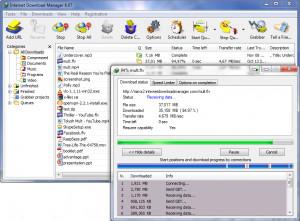 Internet Download Manager čeština náhled pro download