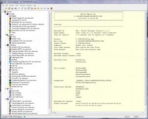 Pascal Analyzer náhled pro download