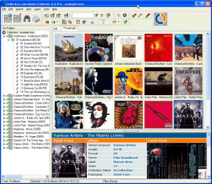 Music Collector náhled pro download
