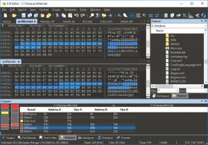 010 Editor náhled pro download