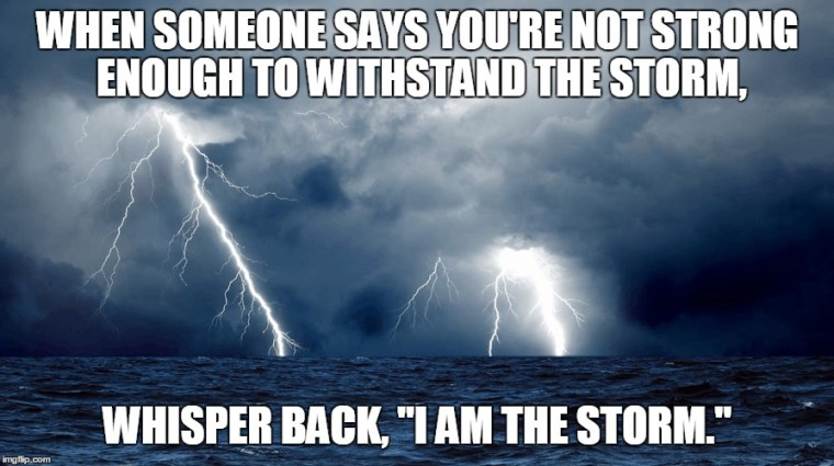 Image result for i am the storm memes