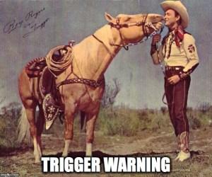 Image result for Trigger Warning