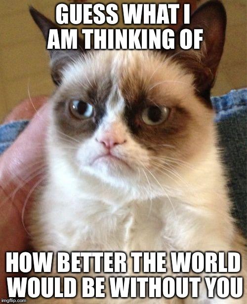 Grumpy Cat Meme Imgflip