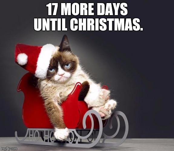Grumpy Cat Christmas HD Imgflip