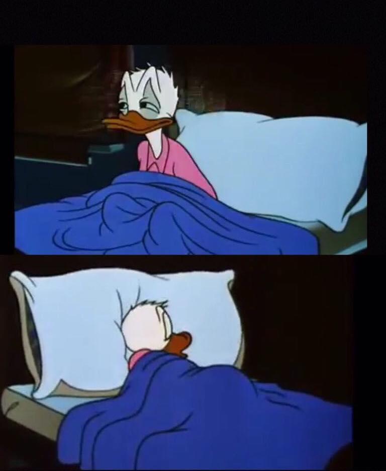 25 Best Memes About Trump Donald Duck Meme Trump Donald