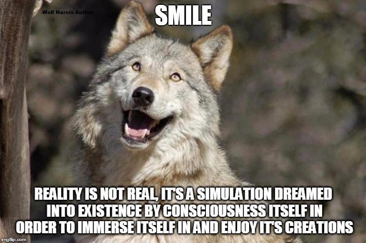Optimistic Moon Moon Wolf Vanadium Wolf Imgflip