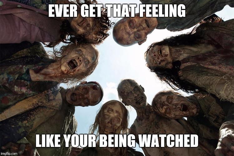Walking Dead Zombie Memes Gifs Imgflip