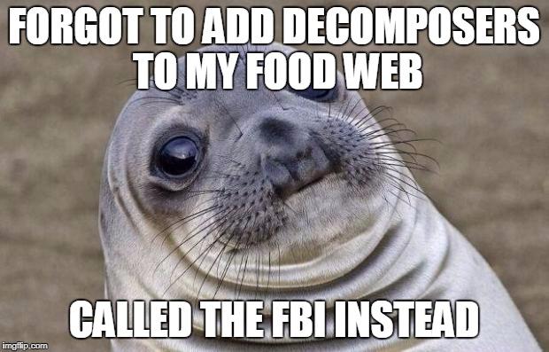 Awkward Moment Sealion Meme Imgflip