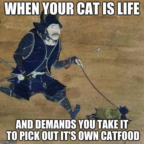 Justu Walking My Catu Memes Gifs Imgflip