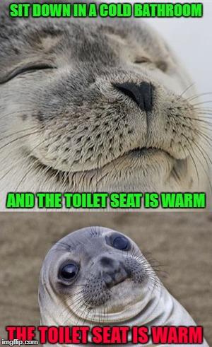 Warm Toilet Seat Memes Gifs Imgflip
