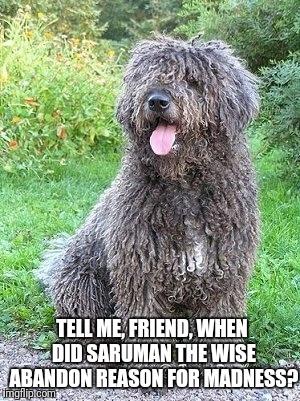 Tell Me Friend Imgflip