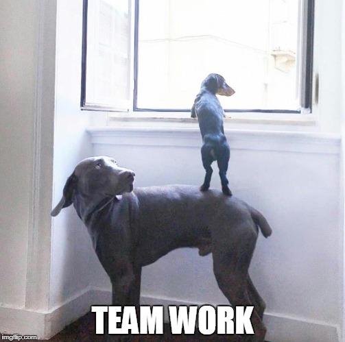 Team Work Imgflip