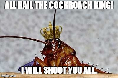 Cockroach King Imgflip