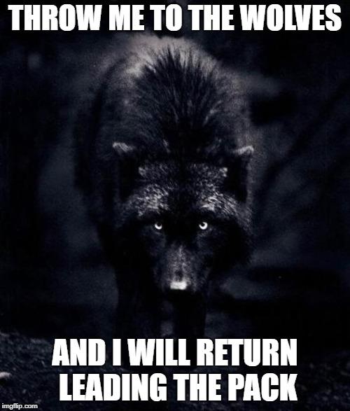 Black Wolf Memes Imgflip