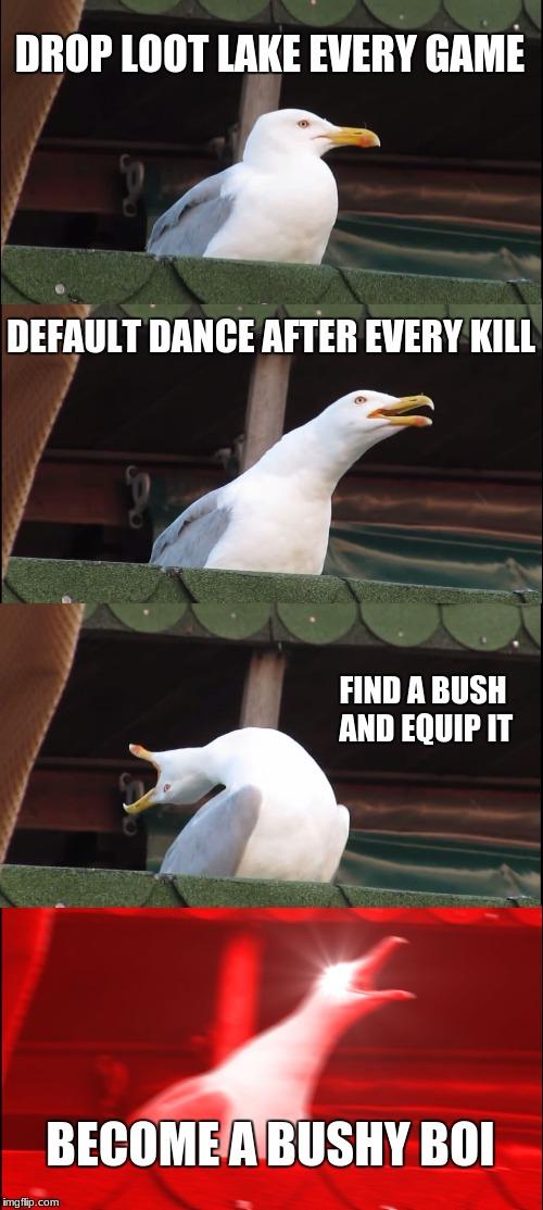 Inhaling Seagull Meme Imgflip