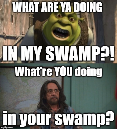 What Are You Doing In My Swamp Memes Gifs Imgflip