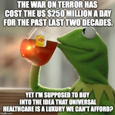 But That's None Of My Business |  THE WAR ON TERROR HAS COST THE US $250 MILLION A DAY FOR THE PAST LAST TWO DECADES. YET I'M SUPPOSED TO BUY INTO THE IDEA THAT UNIVERSAL HEALTHCARE IS A LUXURY WE CAN'T AFFORD? | image tagged in memes,but thats none of my business,kermit the frog,healthcare,war on terror,george bush | made w/ Imgflip meme maker