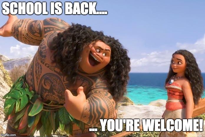 Moana Maui You Re Welcome Memes Imgflip