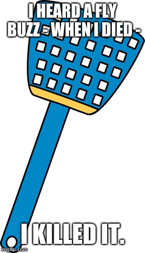 Fly Swatter Memes Gifs Imgflip