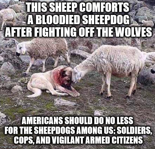 The Sheepdogs Among Us Imgflip