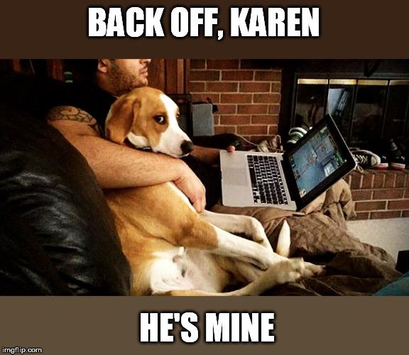 Jealous Doggo Imgflip
