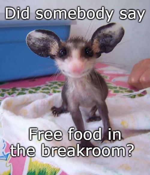 Image Tagged In Breakroom Free Food Break Time Medical Humor Food