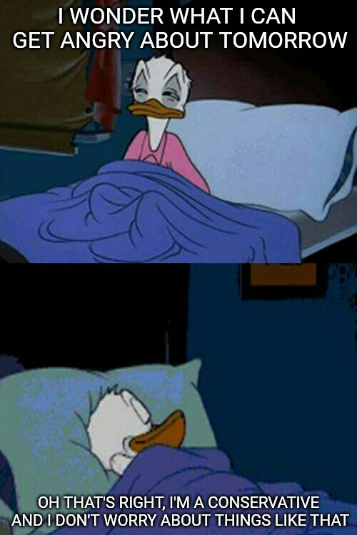 Duck Meme Templates Imgflip