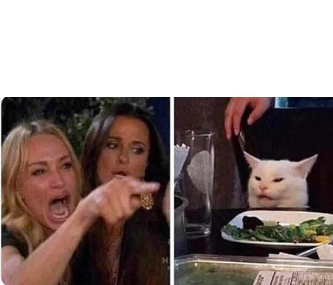 Lady Screams At Cat Blank Template Imgflip