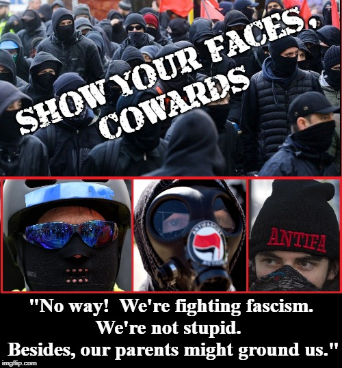 Image result for antifa are cowards memes