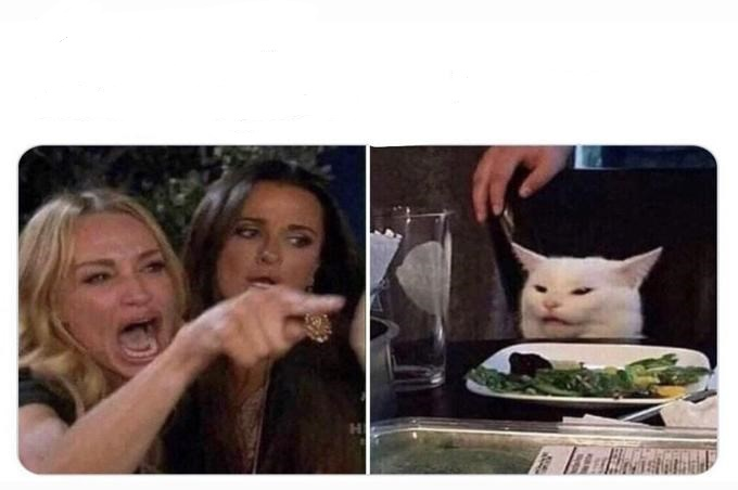 Woman Shouting At Cat Blank Template Imgflip