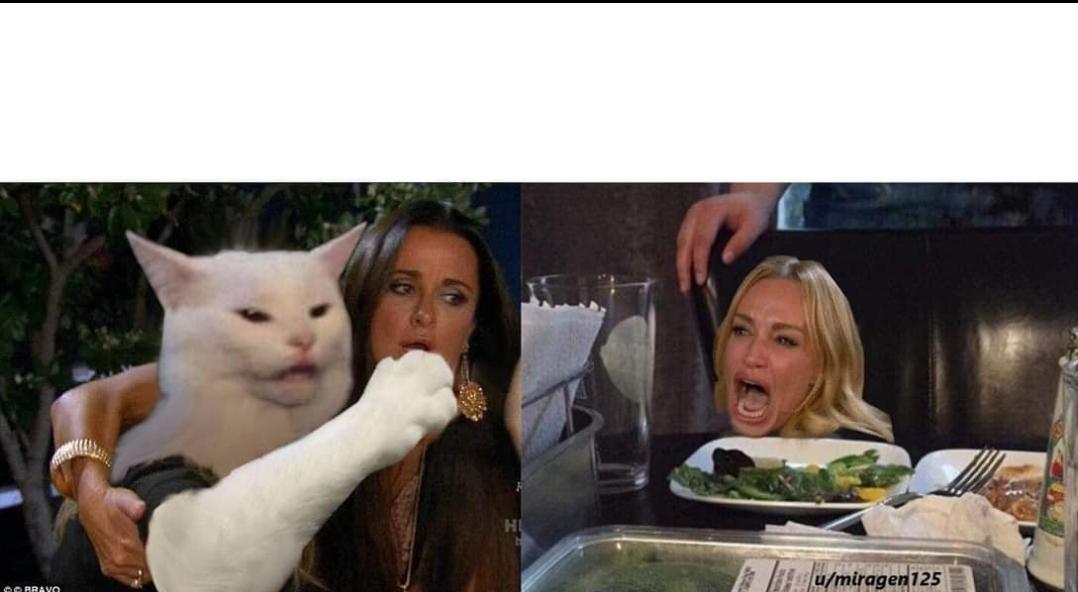 Crying Woman And Cat Meme Generator لم يسبق له مثيل الصور Tier3 Xyz