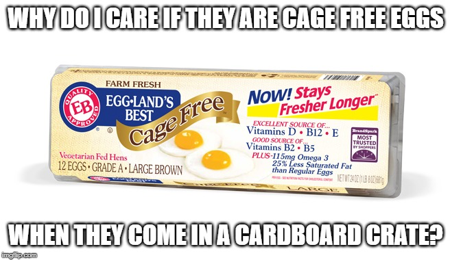 Organic Cage Free Natural The Truth Behind Egg Chicken Labels