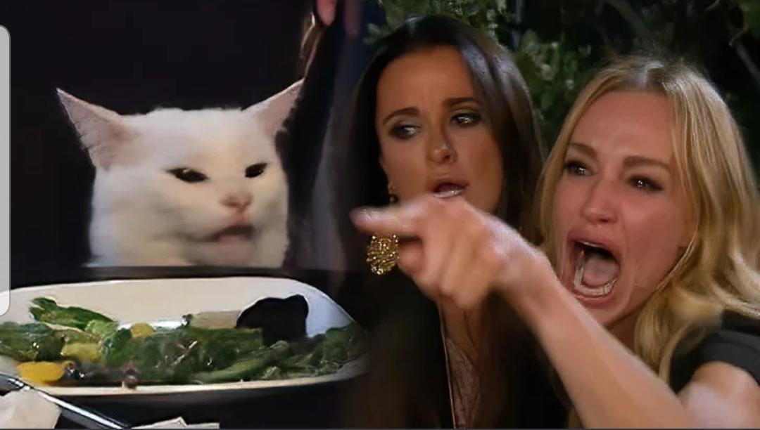 Cat Woman Meme Generator لم يسبق له مثيل الصور Tier3 Xyz
