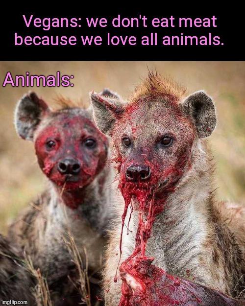 25 Best Memes About Meme Vegan Meme Vegan Memes