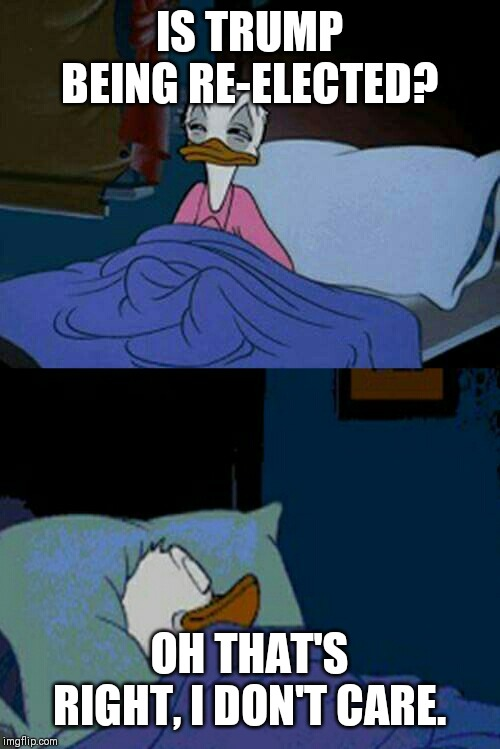 The Week S Best Quarantine Memes Digg