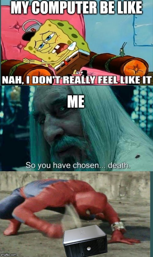 I Feel Like Death Angry Cat Asshole Meme Generator