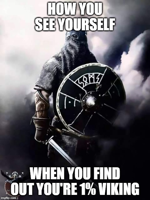 Viking Warrior | HOW YOU SEE YOURSELF WHEN YOU FIND OUT YOU'RE 1% VIKING | image tagged in viking warrior | made w/ Imgflip meme maker