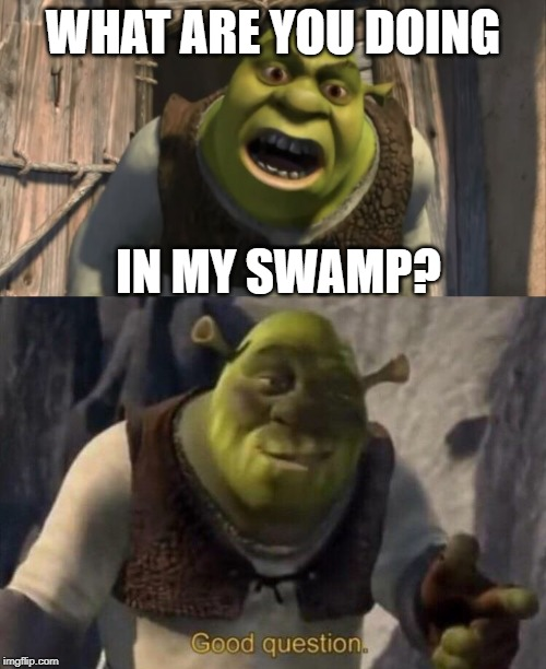 Shrek What Are You Doing In My Swamp Memes Gifs Imgflip