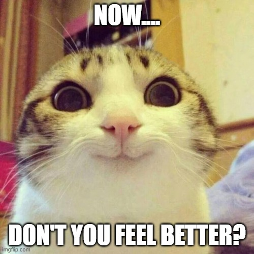 Stoner Cat Out Of Weed Funny Marijuana Meme Weed Memes
