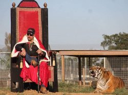 Dabo Tiger King Must See