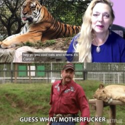 Tiger King S Carole Baskin Says Drones Are Swarming Over Her