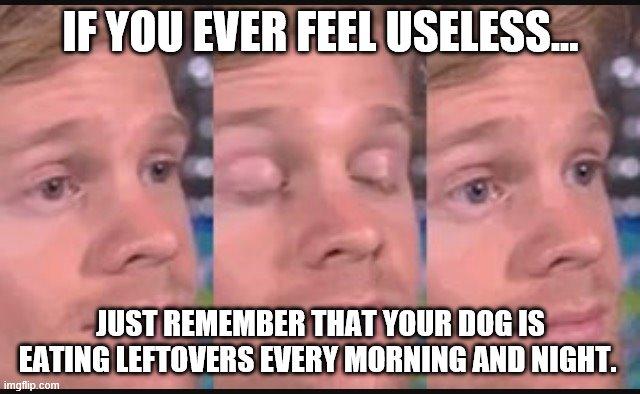 Worthless Memes