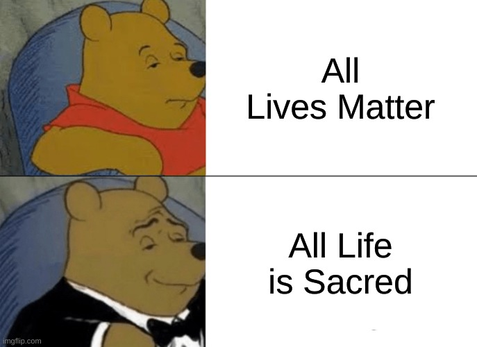 Animal Crossing All The Best Memes About New Horizons